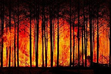 Kalifornská energetická společnost čelí kvůli požárům obžalobě ze zabití