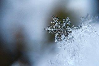 Texaská energetika při zimní bouři zkolabovala. Pomůže zateplení a tepelná čerpadla?